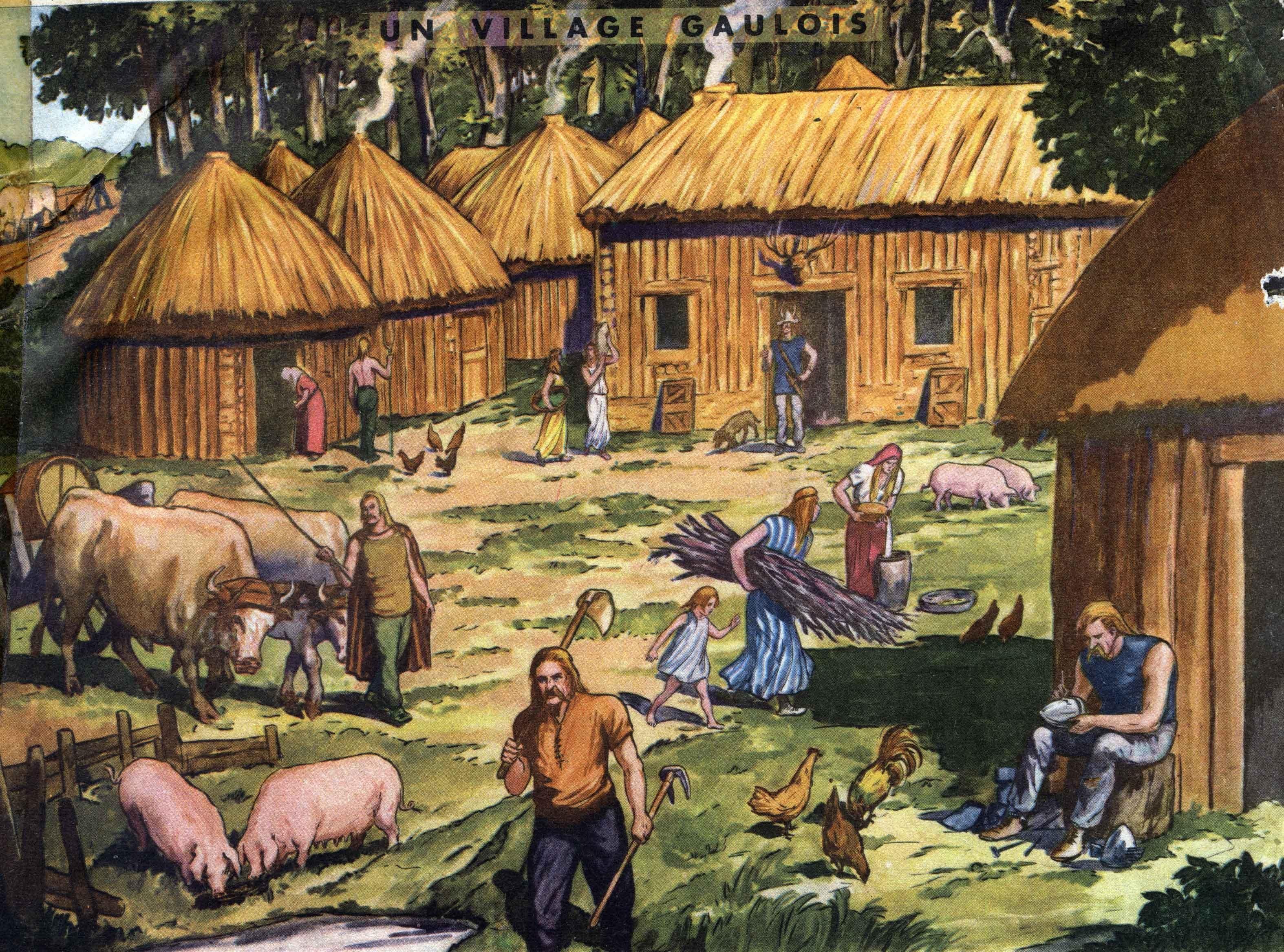 1 village gaulois