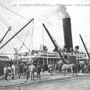 Illustrations La Rochelle (30)