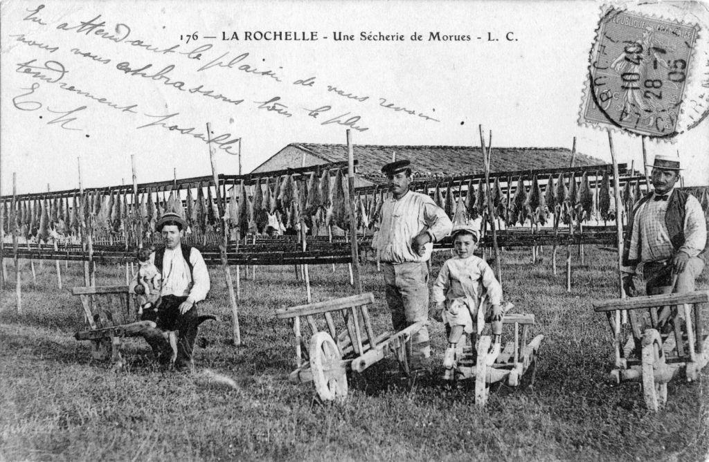 Illustrations La Rochelle (50)