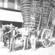 Le ramasseur de paniers